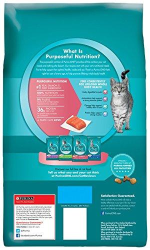Purina One Salmon And Tuna Cat Food Review